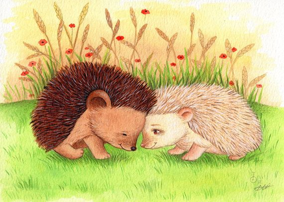 Hedgehogs in Love Art Print from an Original by TinyRed on Etsy, £8.99 *Hodgy