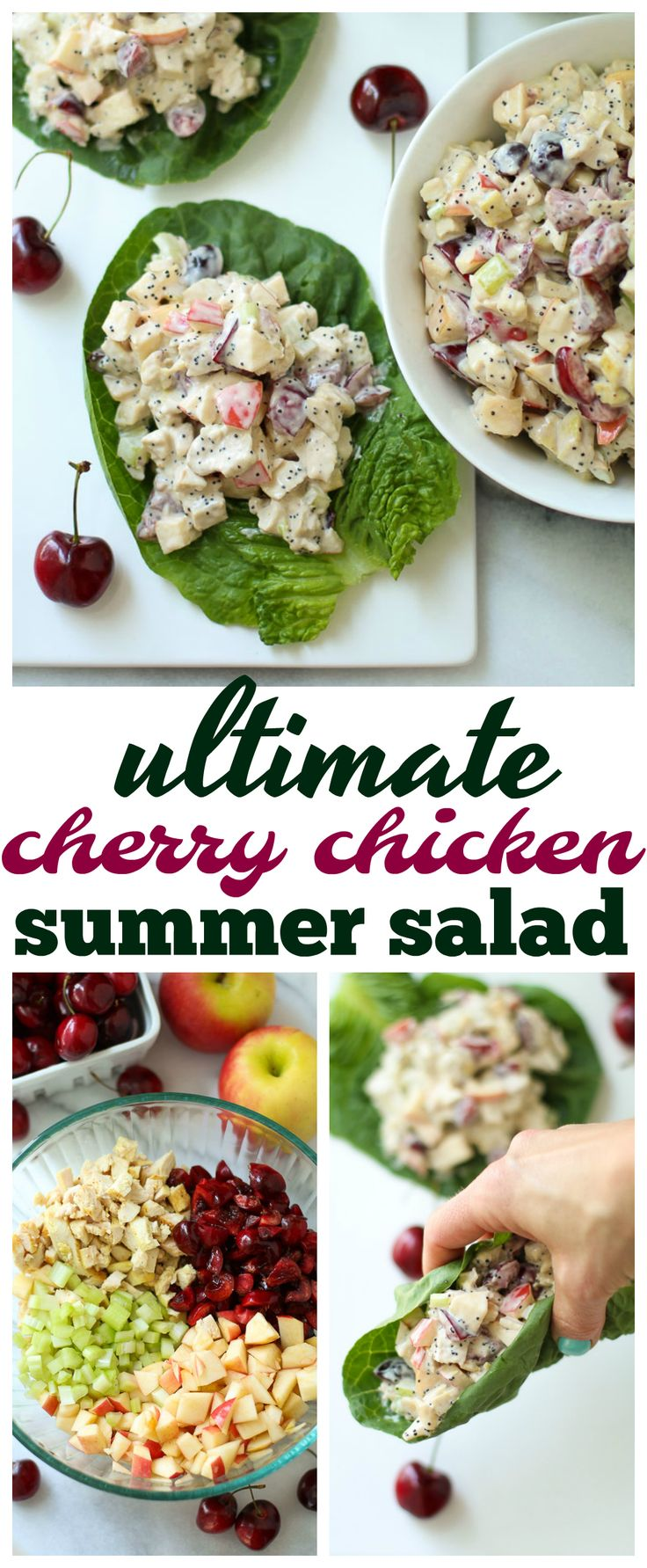 A new twist on classic chicken salad, this Ultimate Cherry Chicken Summer Salad is a light, fresh, delicious meal that is so easy to throw together!  via @kimscravings