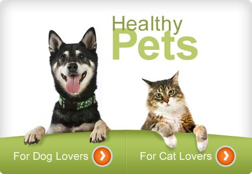 Pet health care/diet and nutrition/behavior and training, etc by WebMD