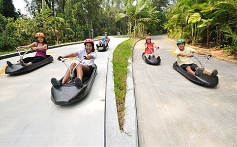 Sentosa Luge & Skyride - Cruise in a leisurely fashion – or race down, if you prefer – a long paved, curving track in a luge cart that is remarkably easy to manoeuvre. When you reach the bottom of the track, scramble on to the chairlift for a treetop ride back to the starting point, and do it all over again. Sheer fun for young and old. (Siloso Beach, Sentosa Island)