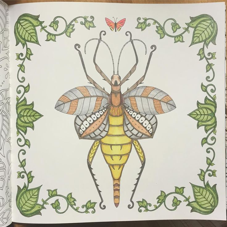 17 Best Images About Magical Jungle Coloring Pages On