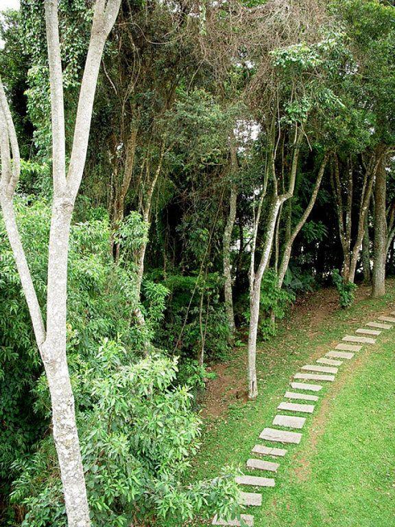 Las 25 mejores ideas sobre caminos de piedra en pinterest for Camino de piedras para jardin