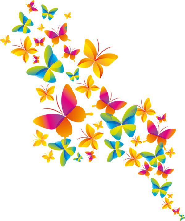 papillons,tubes,butterfly,   Butterflies- Bees ...
