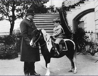 Teddy Roosevelt had such bad asthma that he learned to ride at an early age hoping it would make him stronger. His 2 children had horses when he was at the White House. Archie or Quentin(depending on the source) one of his sons, became very sick & bed ridden for months. His pony Algonquin rode the White House elevator to reach the sick child's bedside, becoming the only pony to ever use the White House elevator (that we know). Horse Country Chic: Presidential Horses