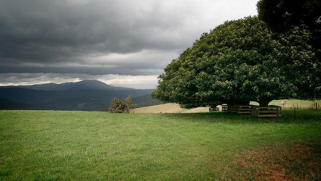 All sizes | View to Mt Baw Baw West Gippsland - Warragul and surrounds | Flickr - Photo Sharing!