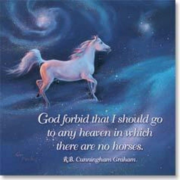 """Horse Heaven"" Fridge Magnet - Stationery"