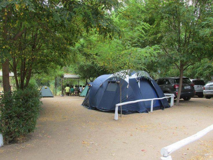 Bosque Los Perales - Camping
