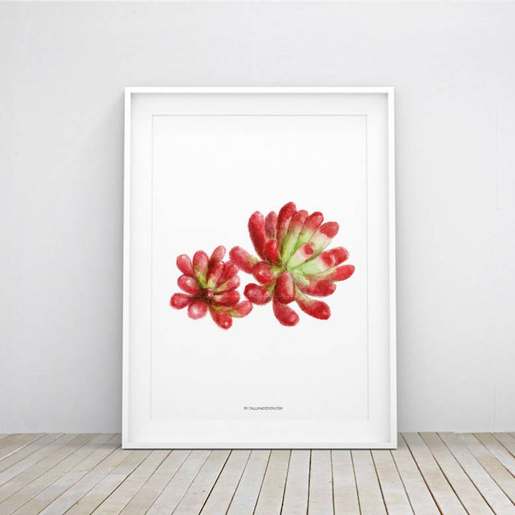 CACTUS Printable Poster | Nature Cactus Illustration Wall Art | Decoration | Instant Download by callimadesign on Etsy