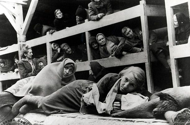 auschwitz essays Auschwitz - birkenau death camp this essay auschwitz - birkenau death camp and other 63,000+ term papers, college essay examples and free essays are available now on.