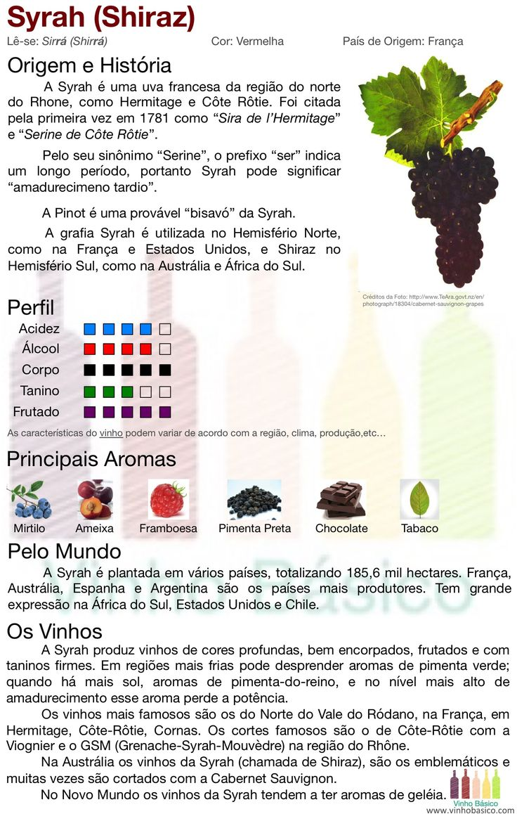 Características da uva Syrah. Perfil, aromas e estilos dos vinhos.