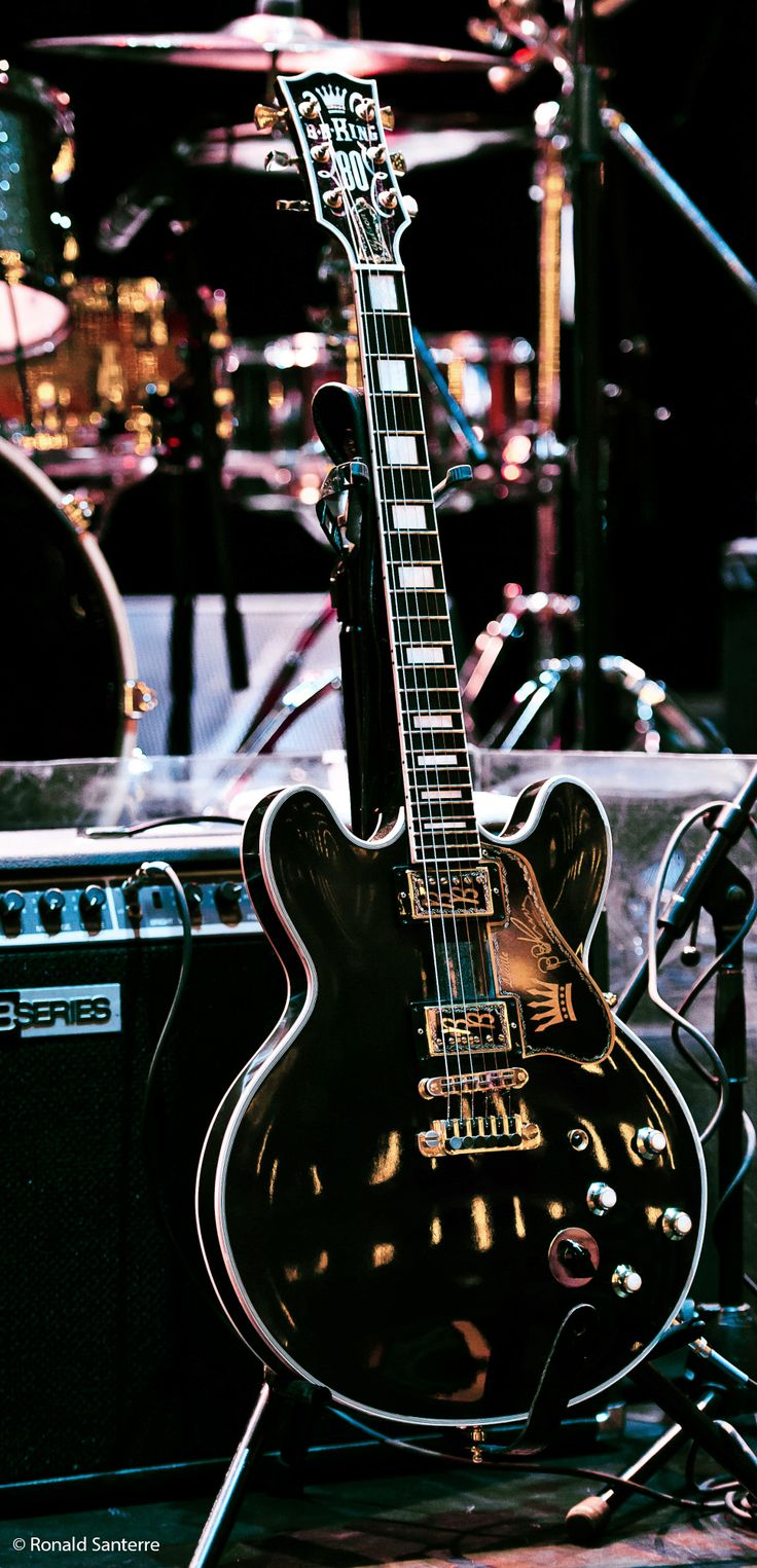 """B.B. King's """"Lucille"""" Custom Gibson ES-355 ... This stunning photograph was taken at the National Arts Centre (NAC) in Ottowa, Ontario, Canada on May 27, 2012. © Ronald Santerre