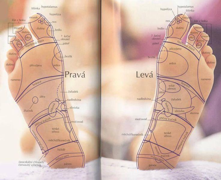 Stav našich chodidel ovlivňuje naši chůzi, držení těla, svaly, klouby a míru bolesti našeho pohybového aparátu. Vše z nich vychází a tudíž jsou velmi důležitá pro procvičení celého těla. Podle postoje