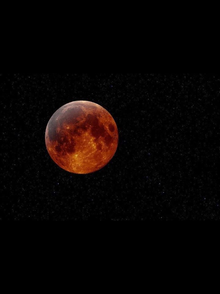 Coolest blood moon pic I've seen, taken with a telescope.