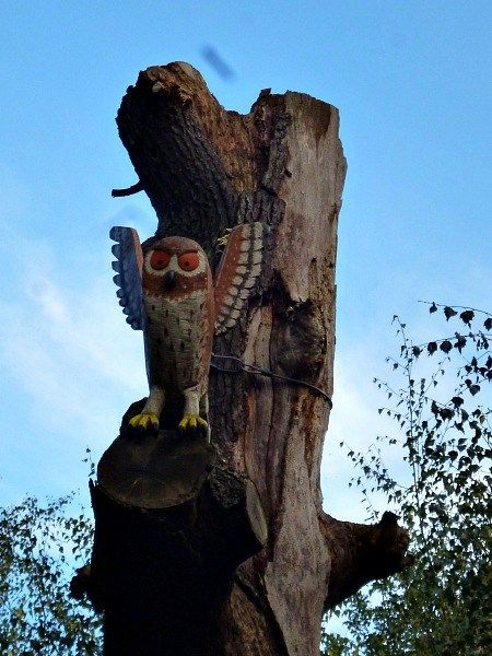owl gruffalo trail thorndon park essex