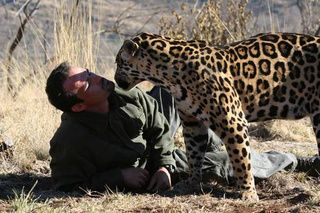 Kevin Richardson, the Lion Whisperer of South Africa
