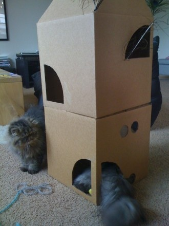 Delightful 24 Best Ideas To Keep Cats From Scratching Furniture Images On Pinterest |  Cat Stuff, Kitty Cats And Cat Scratching Nice Design