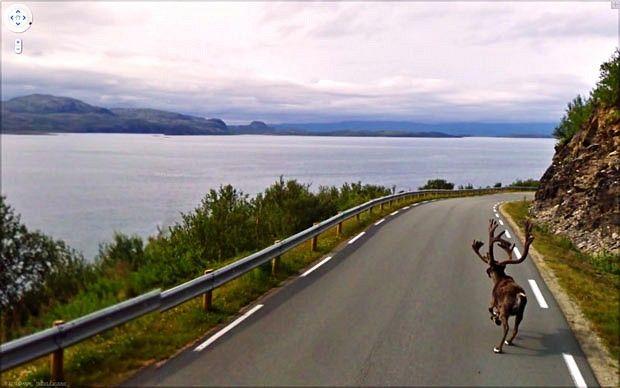 Google streetview images