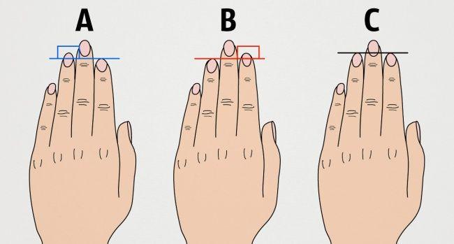 Вот что длина пальцев руки говорит овашем характере