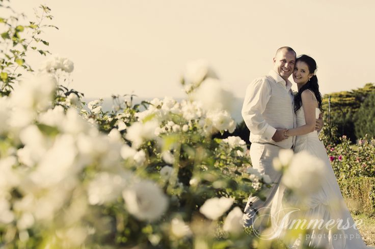 Roses in full bloom Photography: Immerse Photography
