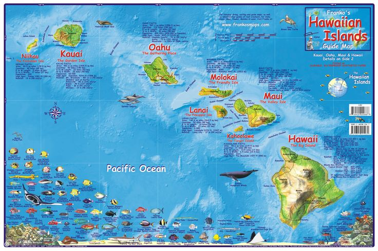 16 best hawaii maps images on pinterest hawaiian islands hawaii fabulous maps of favorite places from hawaii to california on biking trails to diving maps to surfing maps and fish creature guides gumiabroncs Gallery