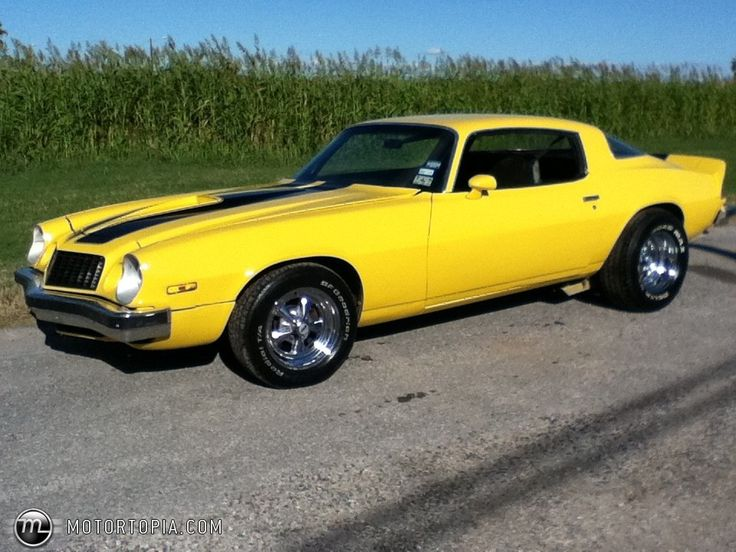 1977 Camaro  Photo of a 1977 Chevrolet Camaro BumbleBee