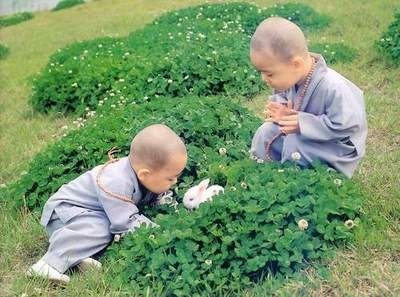 Buddhist children and a rabbitChine Culture, Rabbit Hole, Buddhism, Learning Chine, Kung Fu, Martial Art, Kids, White Rabbit, Art Shoes