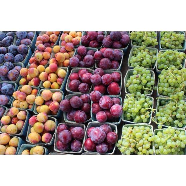 Fruit fresh picked in the Niagara region