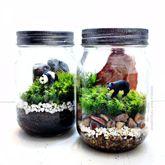Black Bear Terrarium Miniature National Park Landscape