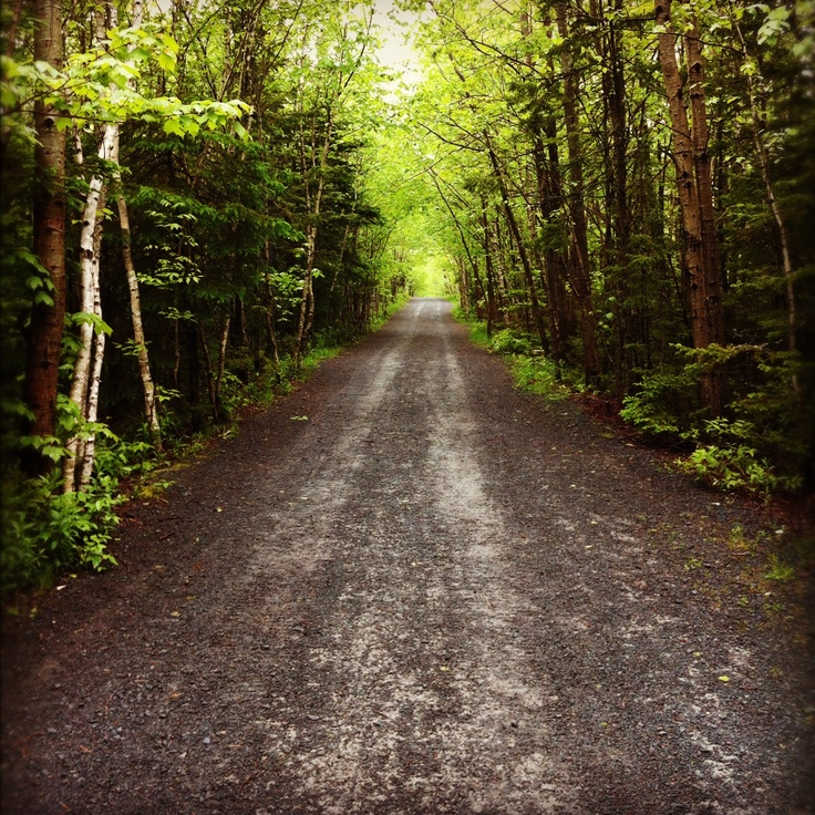 Nova Scotia Hiking Trails: #Halifax Is Home To Many Wooded Parks And Light Hiking