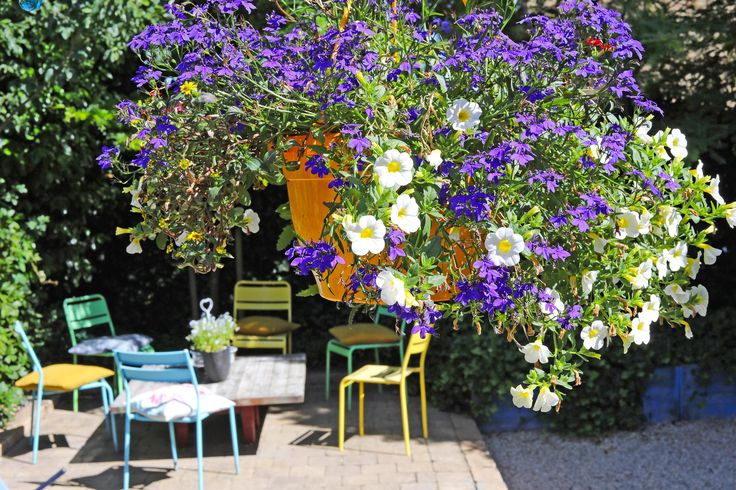 Vlinders die fladderen en de vogeltjes die fluiten. Genieten op een stoel in een fleurige oase.