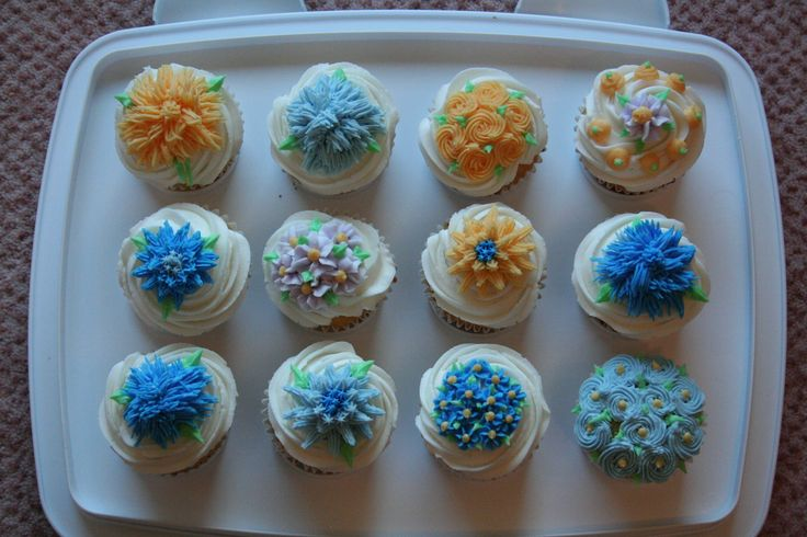 Cupcakes I made during my Wilton class, May 2011.