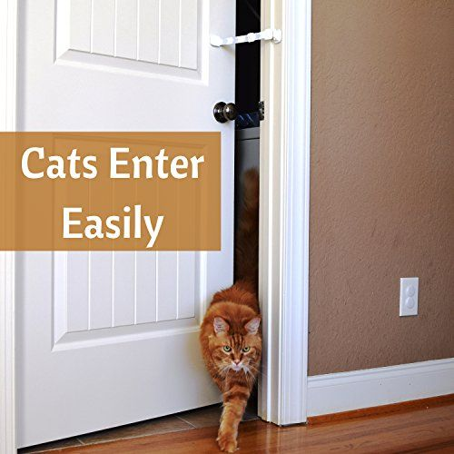 Door Buddy Door Latch to Dog Proof Litter Box. Easy Cat Access ...