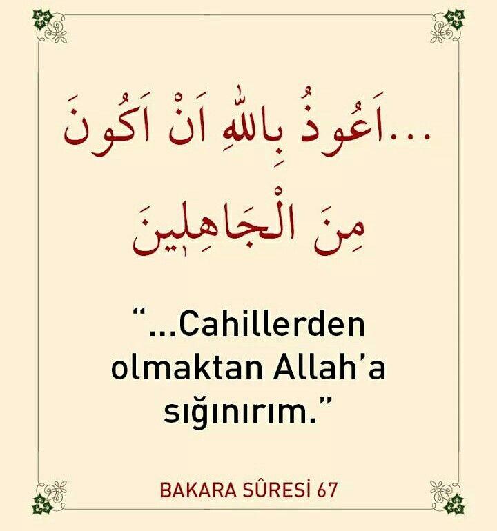Cahillerden olma!  #cahil #olma #dua #ayet #amin #islam #müslüman #türkiye #istanbul #ilmisuffa