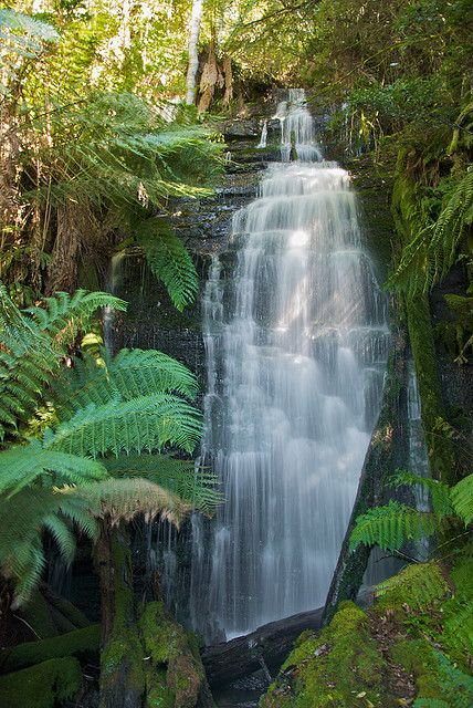 Westmoreland Falls at Mole Creek in http://www.bloggerme.com.au/states/sandy-cove Australia. #molecreek #waterfall Image Credit: Gary Stockton