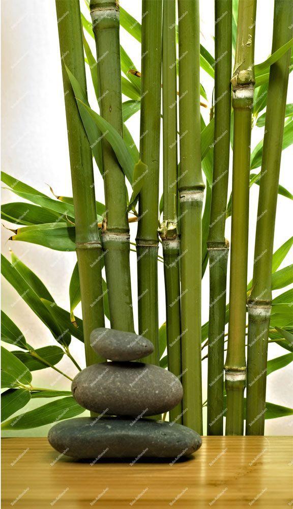 Fototapeten Bambus Und Steine Arte Zen Pintura A Oleo Bambu
