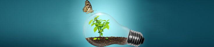 Tips básicos para ahorrar energía en casa #hogar #tips #planblaguia