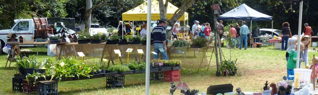 At the Mt Tamborine markets, you will find a variety of shops selling various local products and souvenirs. These typical country-style Mount Tamborine markets are one of the favorite spot among tourists and locals.