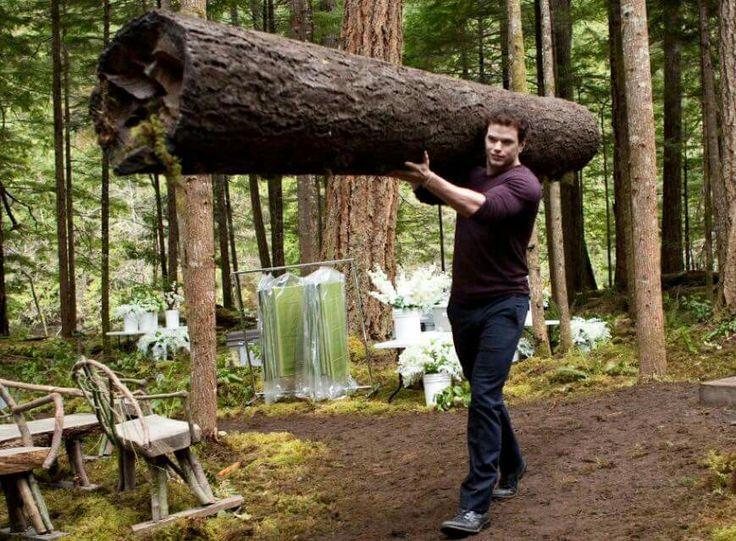 Kellan Lutz as Emmett Cullen in Twilight