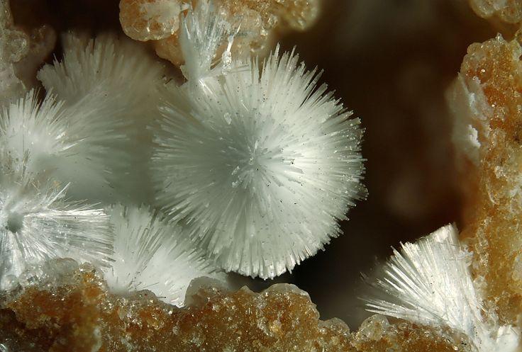 Dundasite, PbAl2(CO3)2(OH)4·H2O, San Giovanneddu Mine, Gonnesa, Carbonia-Iglesias Province, Sardinia, Italy. Fov 3,6mm. Copyright © Elmar Lackner 2009