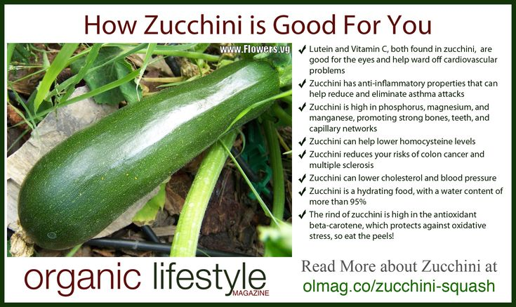 How Zucchini is Good For You