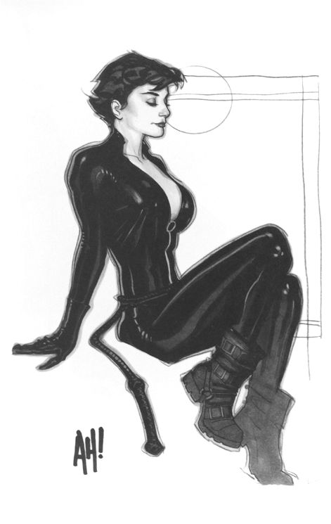 The Women Of Dc Comics Ink In Adam Withers S Dc Comics: 102 Best Comics - Catwoman Images On Pinterest