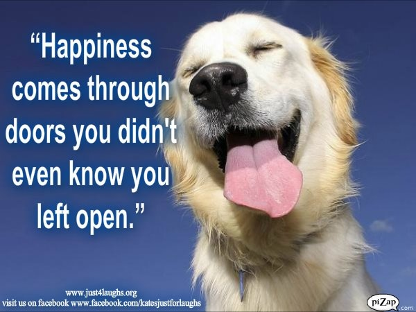 35 Best Wise Dogs Images On Pinterest