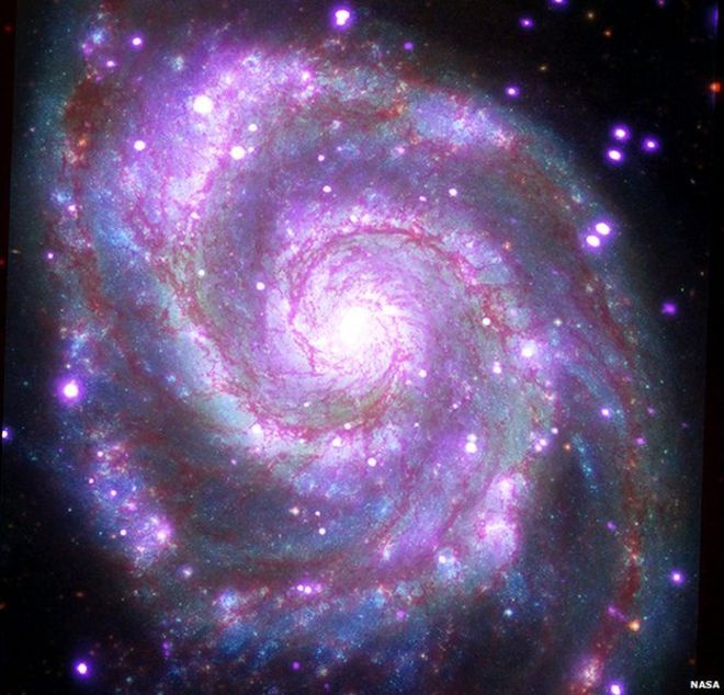"This galaxy, nicknamed the ""Whirlpool,"" is a spiral galaxy, like our Milky Way, located about 30 million light years from Earth. This composite image combines data collected at X-ray wavelengths by Chandra (purple), ultraviolet by the Galaxy Evolution Explorer (GALEX, blue); visible light by Hubble (green), and infrared by Spitzer (red)."