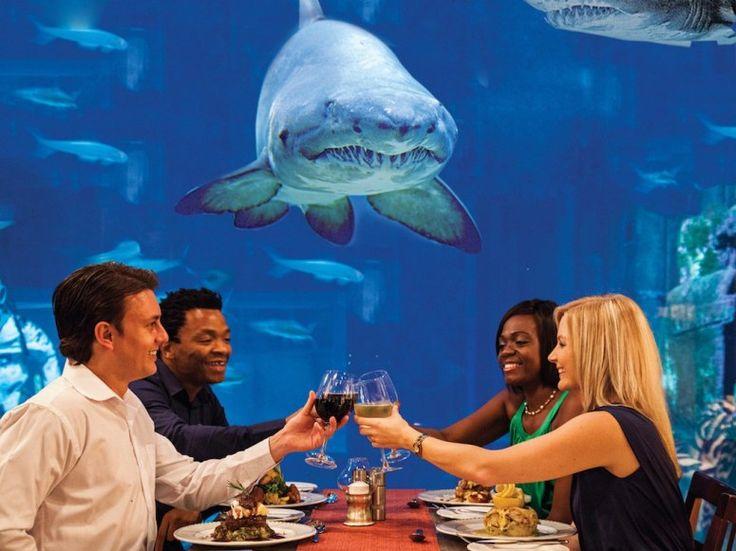 7 Underwater Restaurants and Bars Around the World :   CARGO HOLD RESTAURANT, Durban, South Africa |