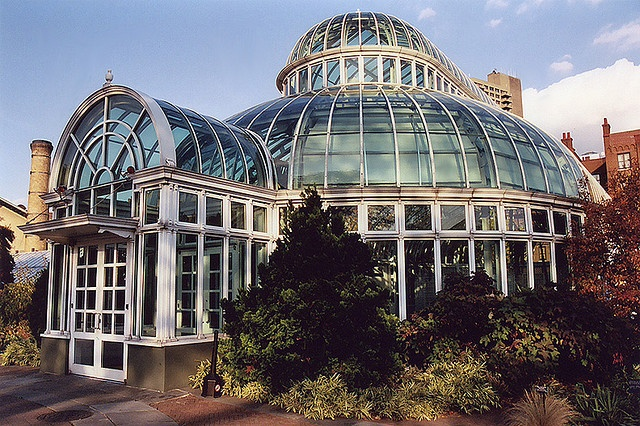 73 Best Greenhouses Images On Pinterest Greenhouses Green Houses And Sheds