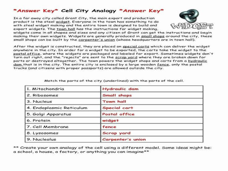 Cell City Analogy Worksheet Elegant Analogy Worksheets in