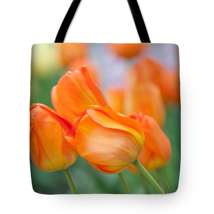 Dutch Orange Tulips  Tote Bag by Jenny Rainbow.  The tote bag is machine washable, available in three different sizes, and includes a black strap for easy carrying on your shoulder.  All totes are available for worldwide shipping and include a money-back guarantee.