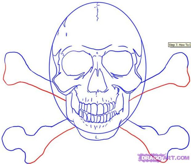 how to draw a skull in illustrator