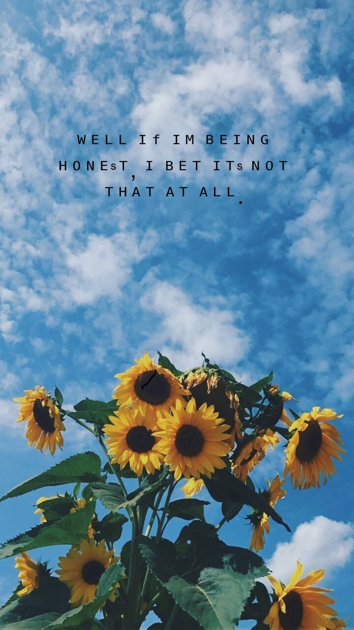 If I M Being Honest Human Dodie Aesthetic Wallpaper