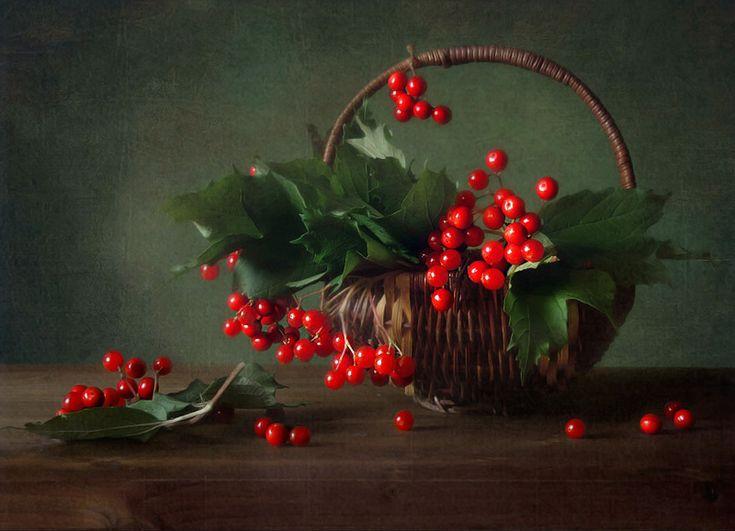 #still #life #photography • photo: калина | photographer: Ирина Преснякова | WWW.PHOTODOM.COM